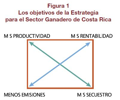 Objetivos de la estrategia para el sector ganadero de Costa Rica